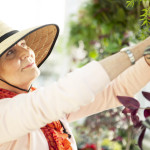PARC Retirement Living What's In: Spring Skin!